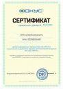 сертификат дилера Фокус